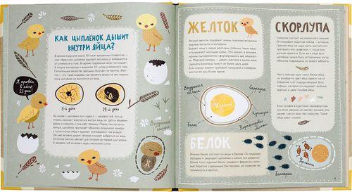 купить Крутые факты о яйцах в Кишинёве