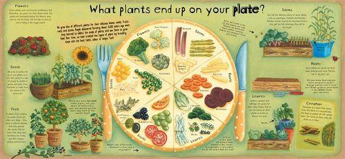 купить Как работают растения(eng) в Кишинёве