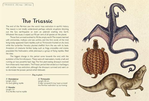 купить The story of Life: Evolution в Кишинёве
