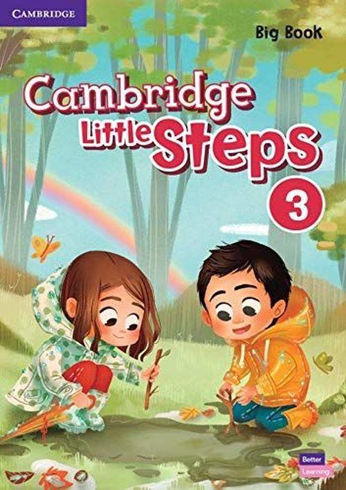 купить Cambridge Little Steps 3 Big Book Книга для чтения в Кишинёве