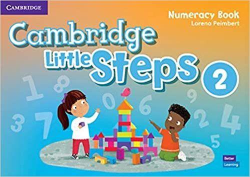 купить Cambridge Little Steps Level 2 Numeracy Book в Кишинёве