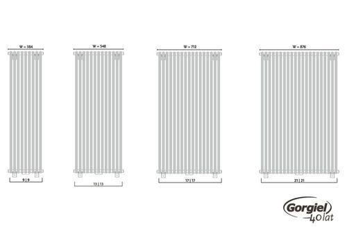 купить Дизайнерский радиатор GORGIEL CEZAR AD2 180/70 в Кишинёве