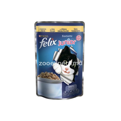 купить FELIX Fantastic Junior с курицей в Кишинёве