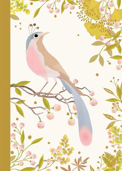 купить Djeco Lovely Paper 2 Small Notebooks (Bird) в Кишинёве