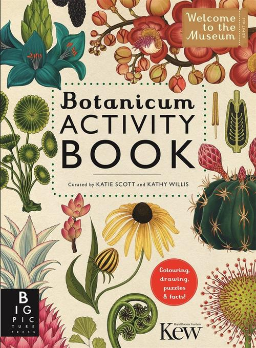 купить Botanicum Activity Book в Кишинёве