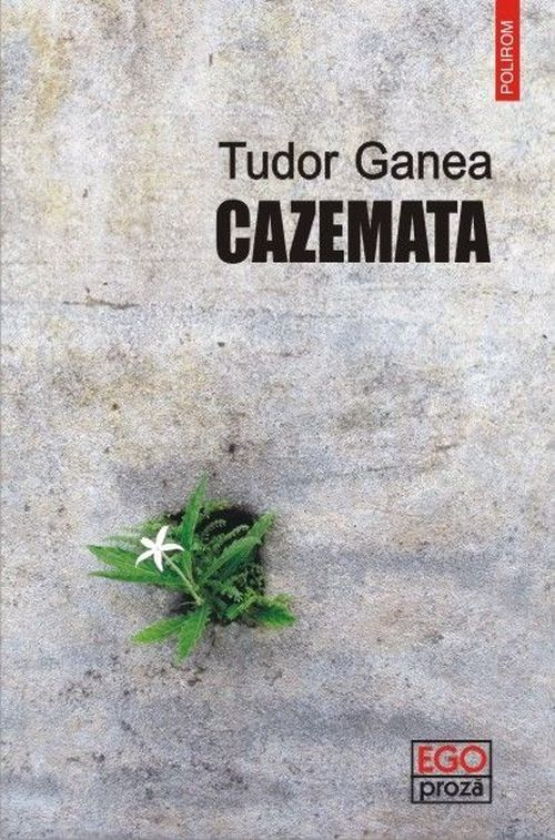 купить Cazemata в Кишинёве