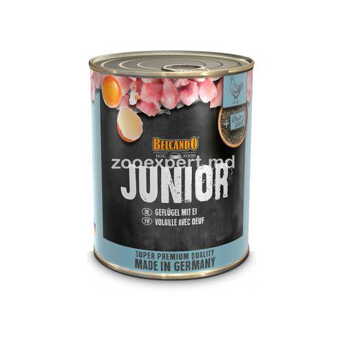 купить Belcando Junior 800 gr в Кишинёве