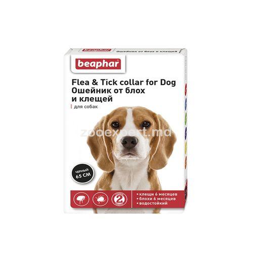купить Ошейник Flea & Tick collar for Dog от блох и клещей для собак в Кишинёве