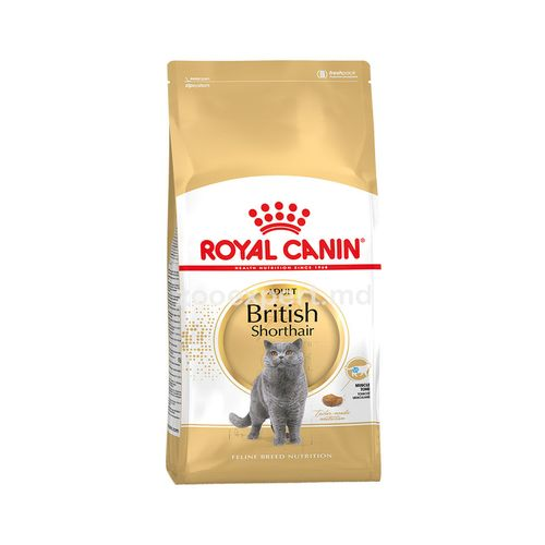 купить Royal Canin BRITISH SHORTHAIR ADULT 10kg в Кишинёве