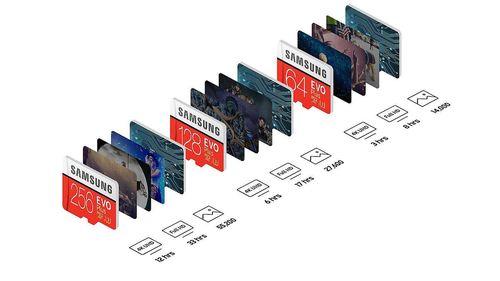 cumpără Card de memorie flash Samsung MB-MC256GA/RU în Chișinău