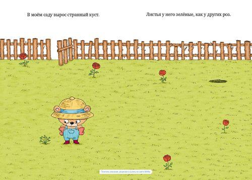 купить Садовник и куст в Кишинёве