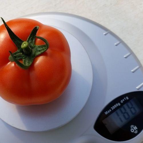 Малик F1 (1000 семян)