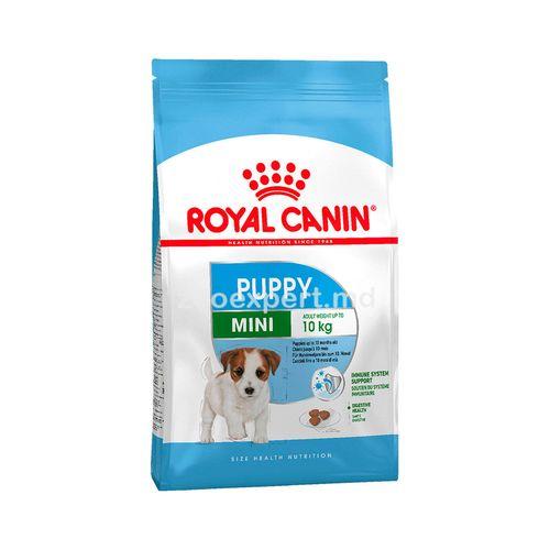 купить Royal Canin MINI PUPPY 2kg в Кишинёве
