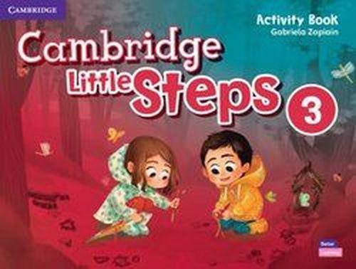 купить Cambridge Little Steps Level 3 Activity Book в Кишинёве