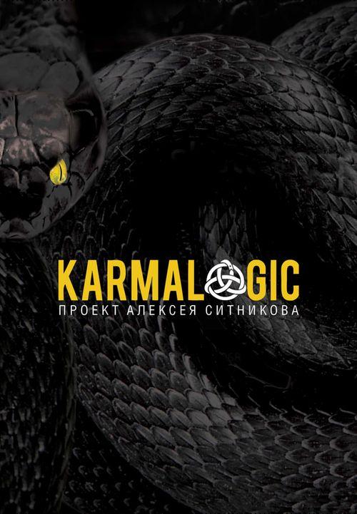купить Karmalogic Алексей Ситников в Кишинёве