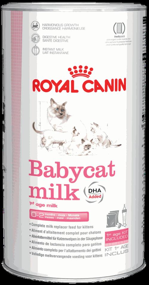 купить Royal Canin  BABYCAT MILK 300 gr в Кишинёве