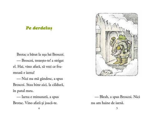 купить Broscoi și Brotac în toate anotimpurile - Arnold Lobel в Кишинёве