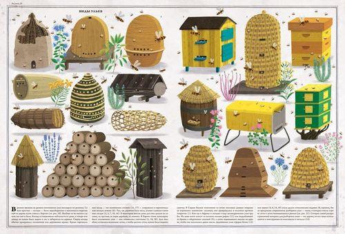 купить Пчёлы - Соха Петр в Кишинёве