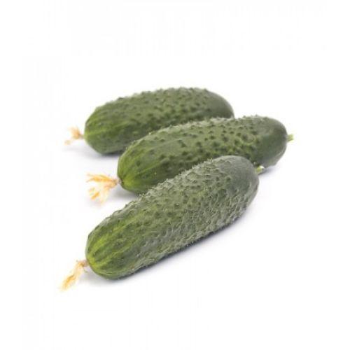Ромара F1 (1000 семян)