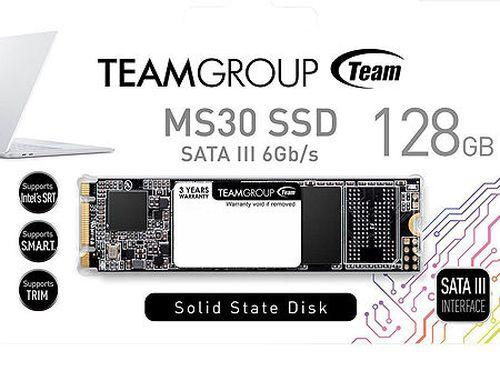 купить 256GB SSD M.2 Type 2280 Team MS30 TM8PS7256G0C101, Read 550MB/s, Write 470MB/s (solid state drive intern SSD/внутрений высокоскоростной накопитель SSD) в Кишинёве