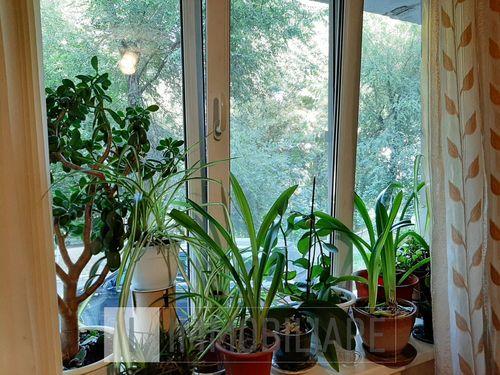 Cameră în cămin, sect. Botanica, șos. Muncești.